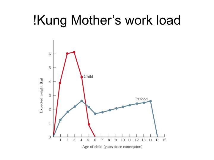 !Kung Mother's work load