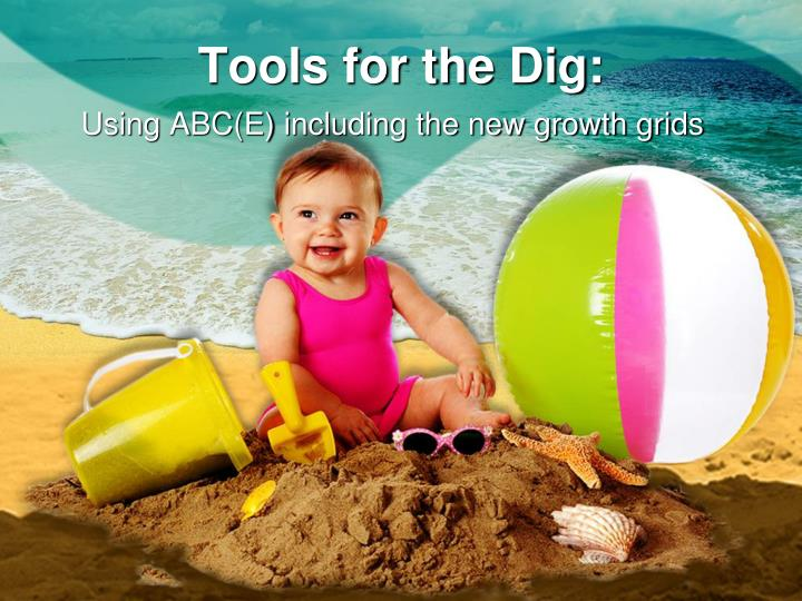 Tools for the dig