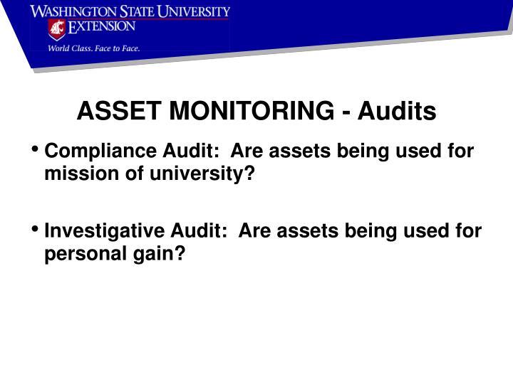 ASSET MONITORING - Audits