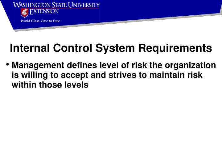 Internal Control System Requirements