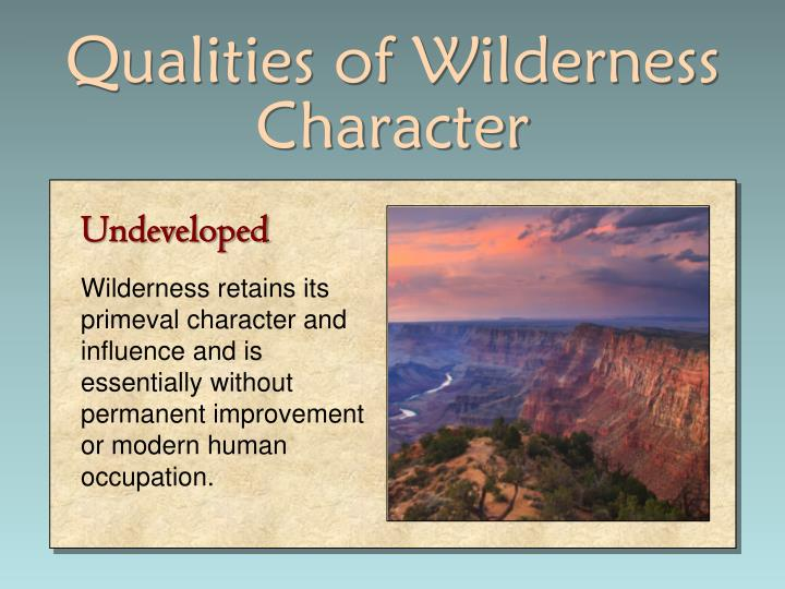 Qualities of Wilderness Character