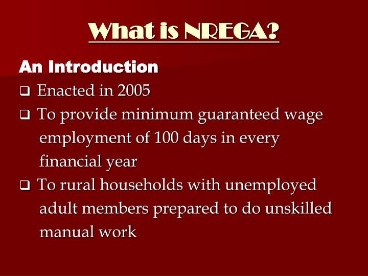 What is NREGA?