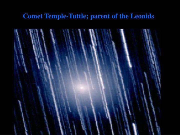 Comet Temple-Tuttle; parent of the Leonids