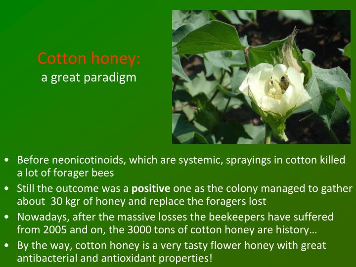 Cotton honey