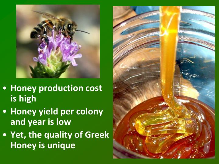 Honey production cost