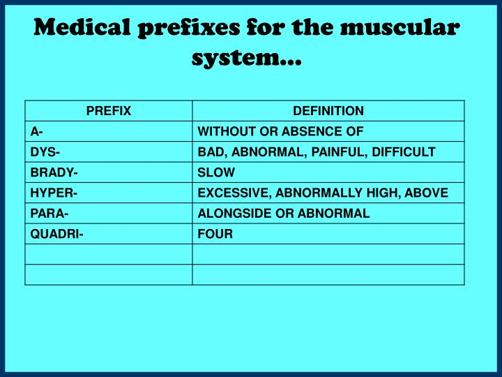 Medical prefixes for the muscular system…