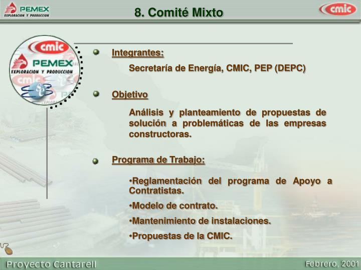 8. Comité Mixto