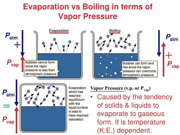 Evaporation vs Boiling in terms of  Vapor Pressure
