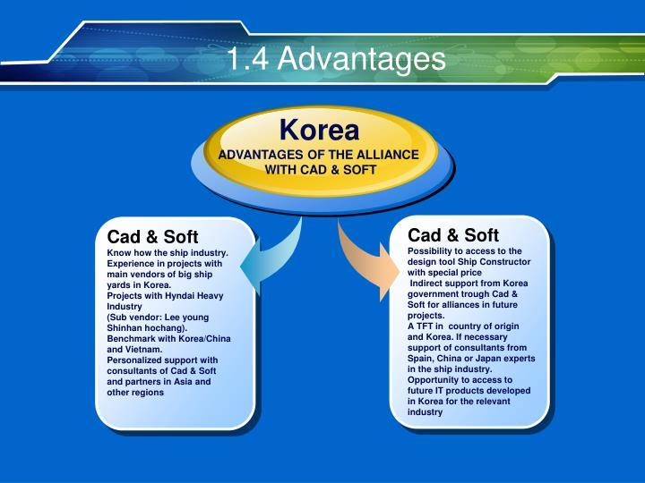 1.4 Advantages