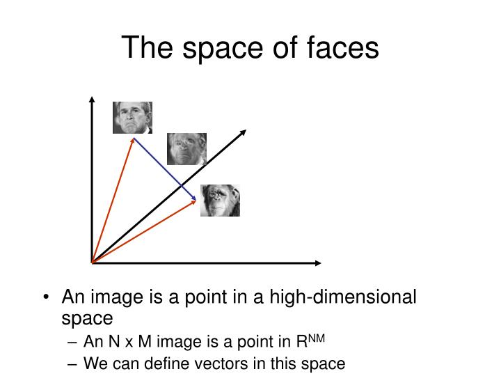 The space of faces