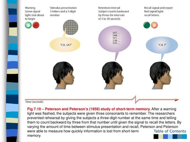 Fig 7.10 – Peterson and Peterson's (1959) study of short-term memory.