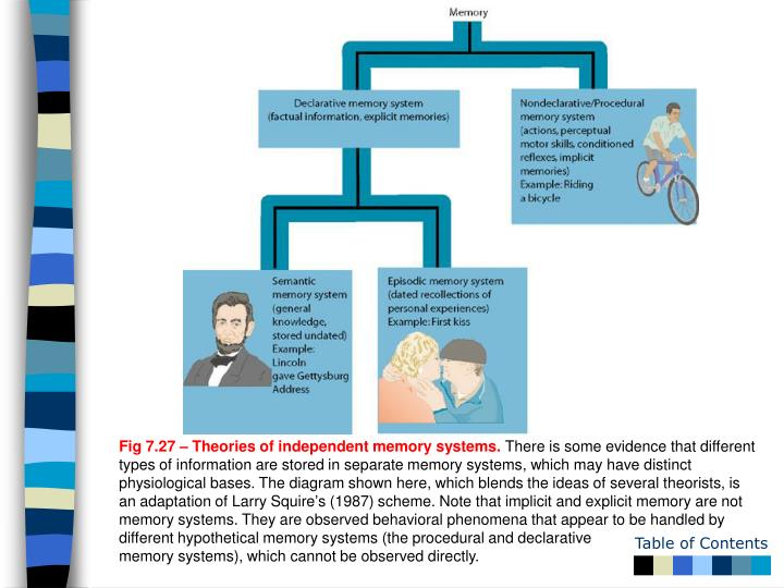 Fig 7.27 – Theories of independent memory systems.