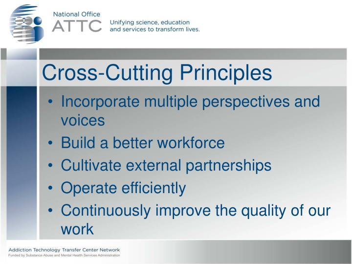 Cross-Cutting Principles