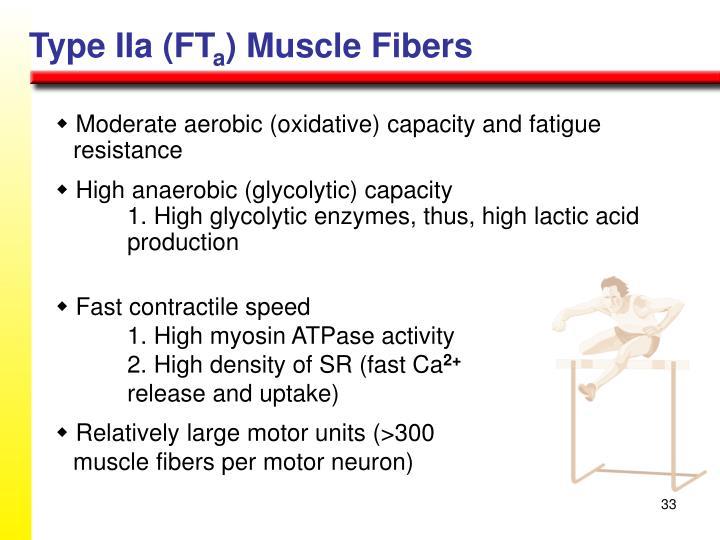 Type IIa (FT