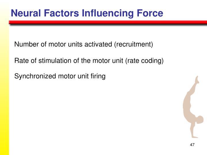 Neural Factors Influencing Force