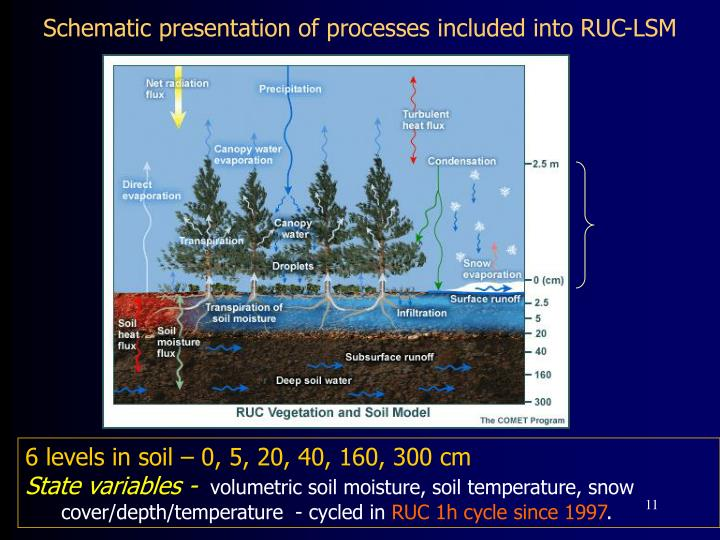 Schematic presentation of processes included into RUC-LSM