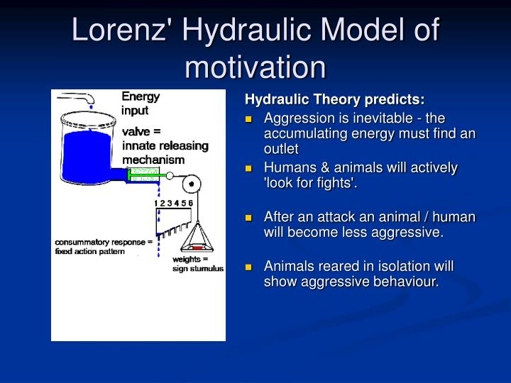 Lorenz' Hydraulic Model of motivation