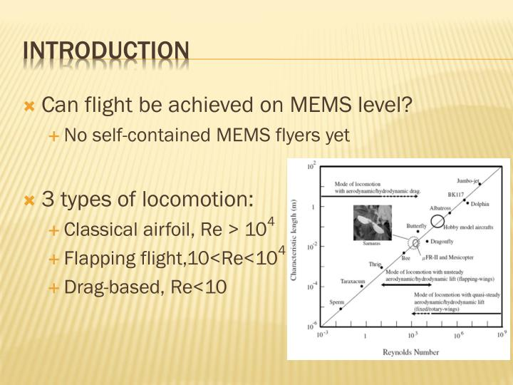 Can flight be achieved on MEMS level?