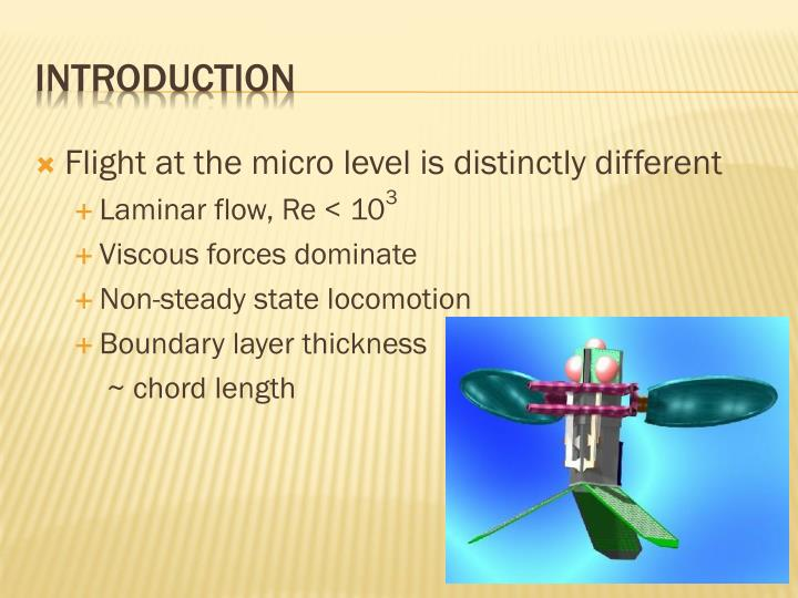 Flight at the micro level is distinctly different