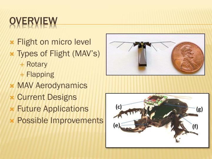 Flight on micro level