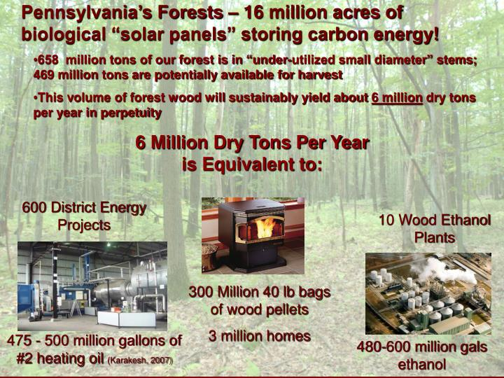 "Pennsylvania's Forests – 16 million acres of biological ""solar panels"" storing carbon energy!"
