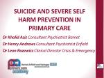 suicide and severe self harm prevention in primary care