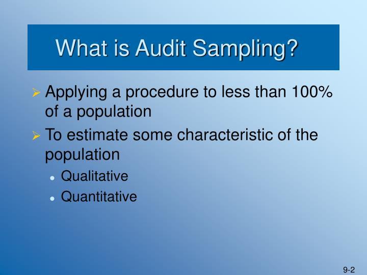 What is Audit Sampling?