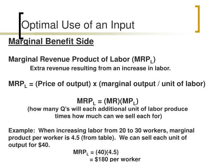 Optimal Use of an Input