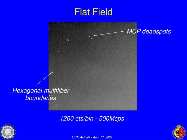 Flat Field
