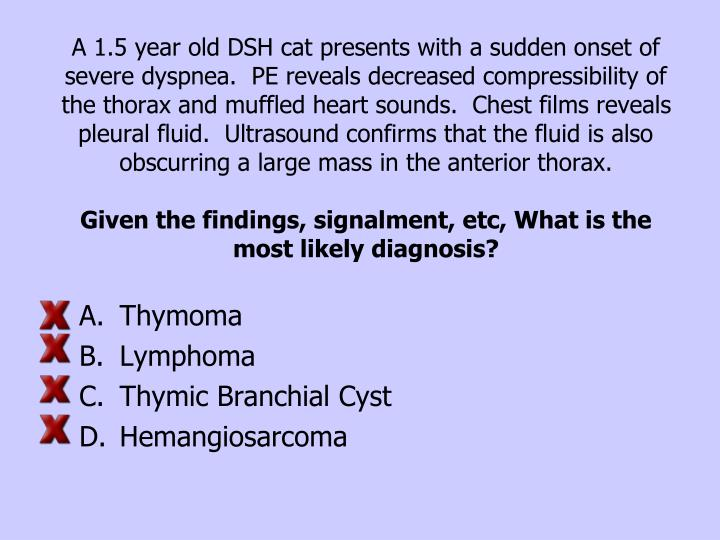 A 1.5 year old DSH cat presents with a sudden onset of severe dyspnea.  PE reveals decreased compressibility of the thorax and muffled heart sounds.  Chest films reveals pleural fluid.  Ultrasound confirms that the fluid is also obscurring a large mass in the anterior thorax.