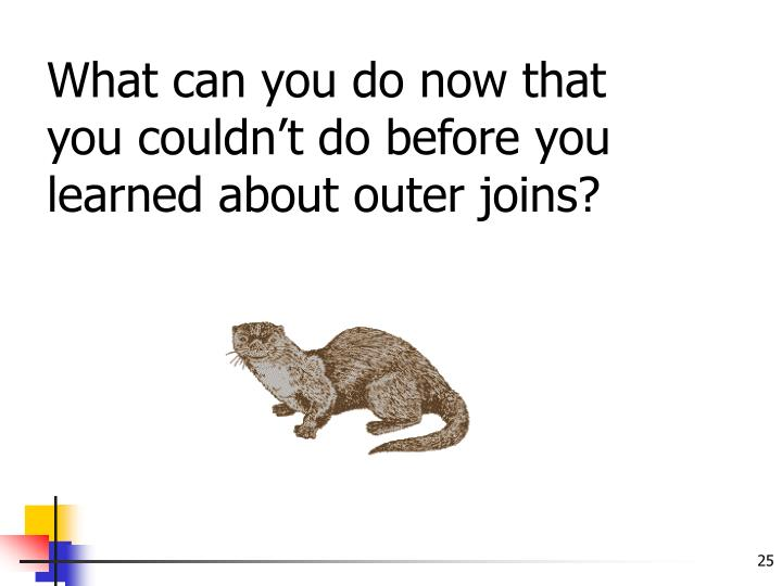 What can you do now that you couldn't do before you learned about outer joins?