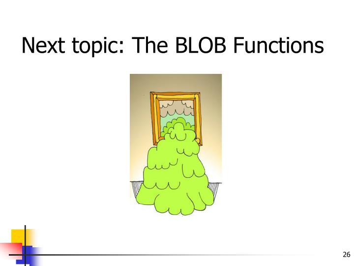 Next topic: The BLOB Functions