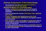 extrinsic compression of the central airway