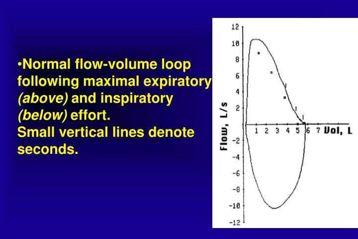 Normal flow-volume loop following maximal expiratory
