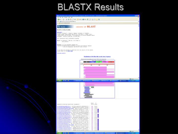 BLASTX Results