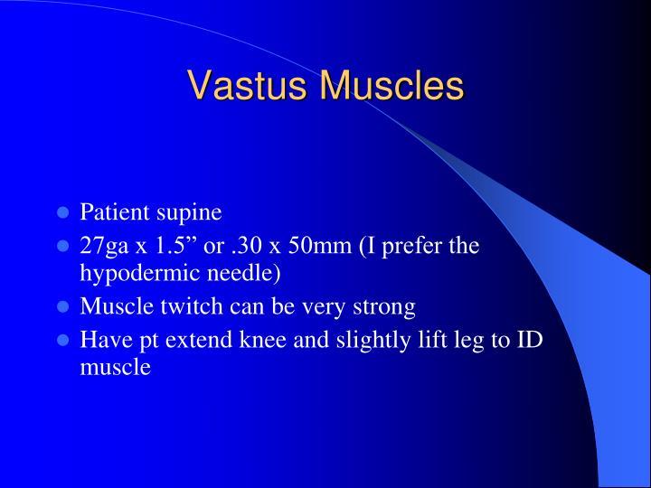 Vastus Muscles
