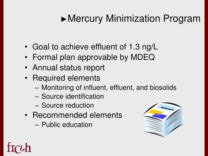 Mercury Minimization Program
