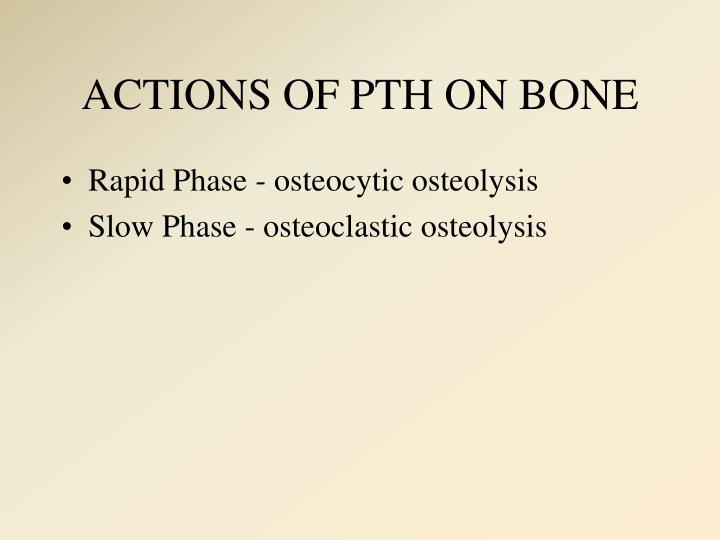 ACTIONS OF PTH ON BONE