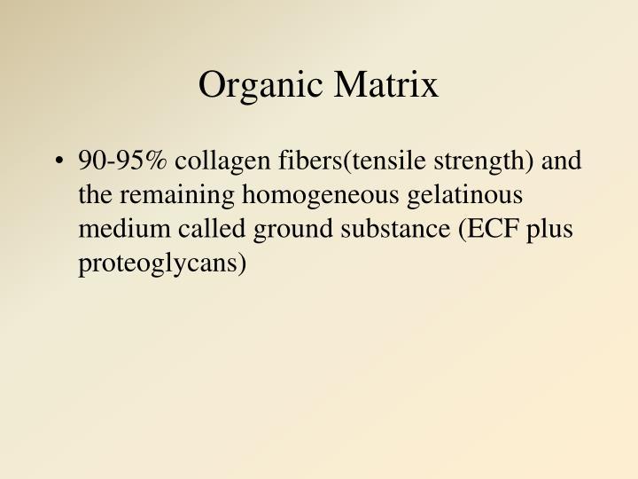 Organic Matrix