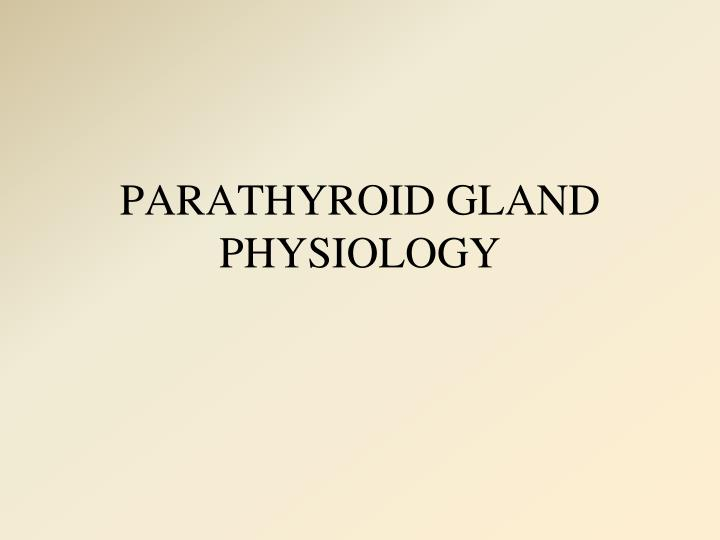 Parathyroid gland physiology