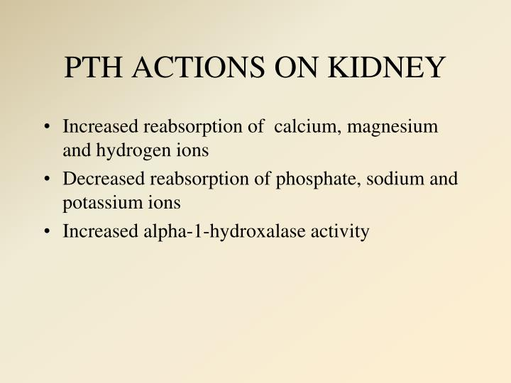PTH ACTIONS ON KIDNEY