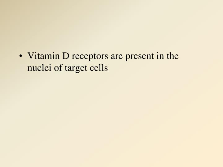 Vitamin D receptors are present in the nuclei of target cells