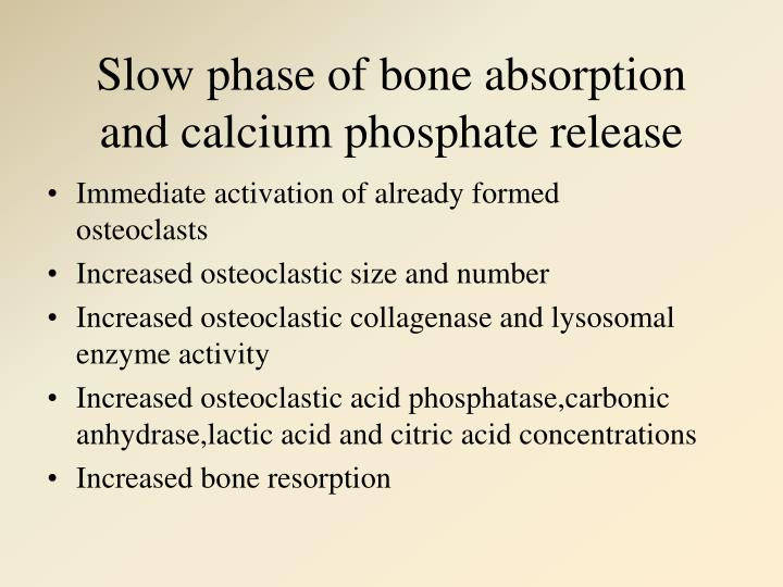 Slow phase of bone absorption and calcium phosphate release