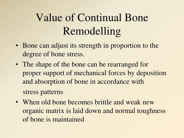 Value of Continual Bone Remodelling