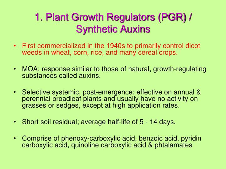 1. Plant Growth Regulators (PGR) / Synthetic Auxins