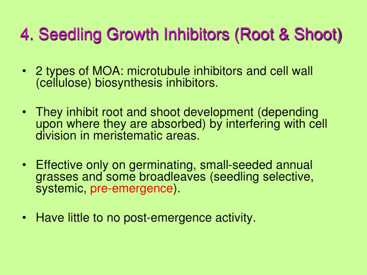 4. Seedling Growth Inhibitors (Root & Shoot)