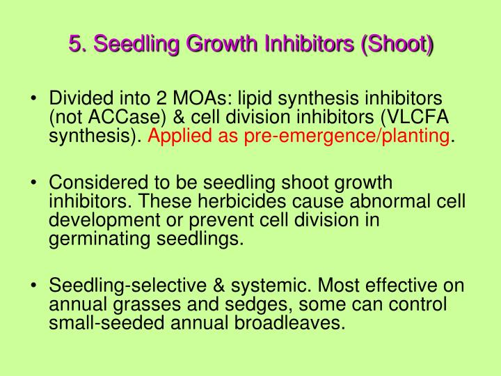 5. Seedling Growth Inhibitors (Shoot)