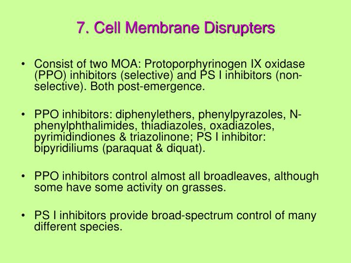7. Cell Membrane Disrupters