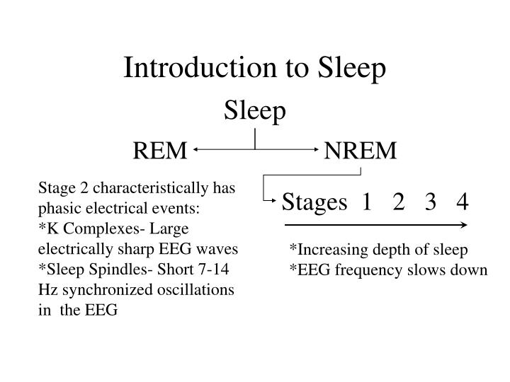 Introduction to Sleep