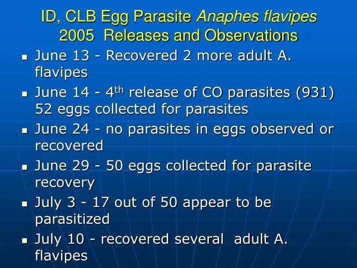 ID, CLB Egg Parasite